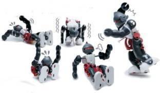 Tumbling Robot - Devrilmeyen Robot